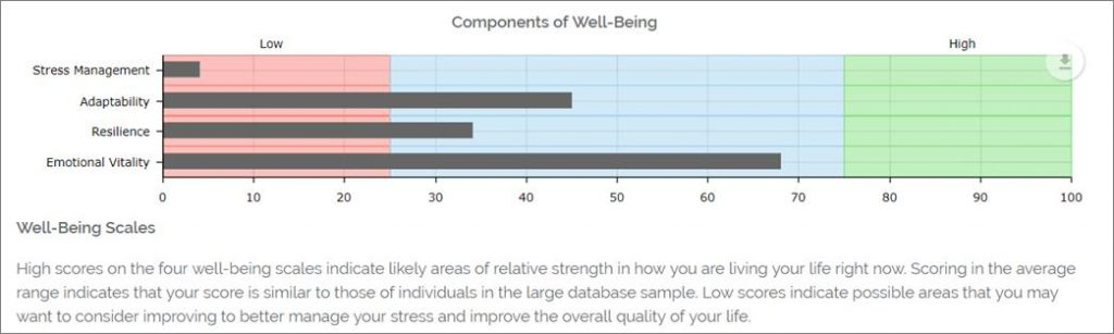 Stress and Well-Being Assessment: Well-Being